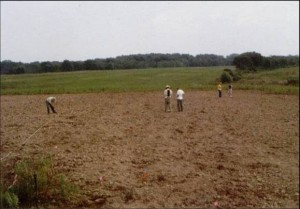 Archaeologists surveying a field