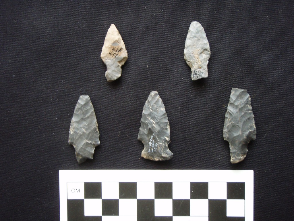 Five projectile points