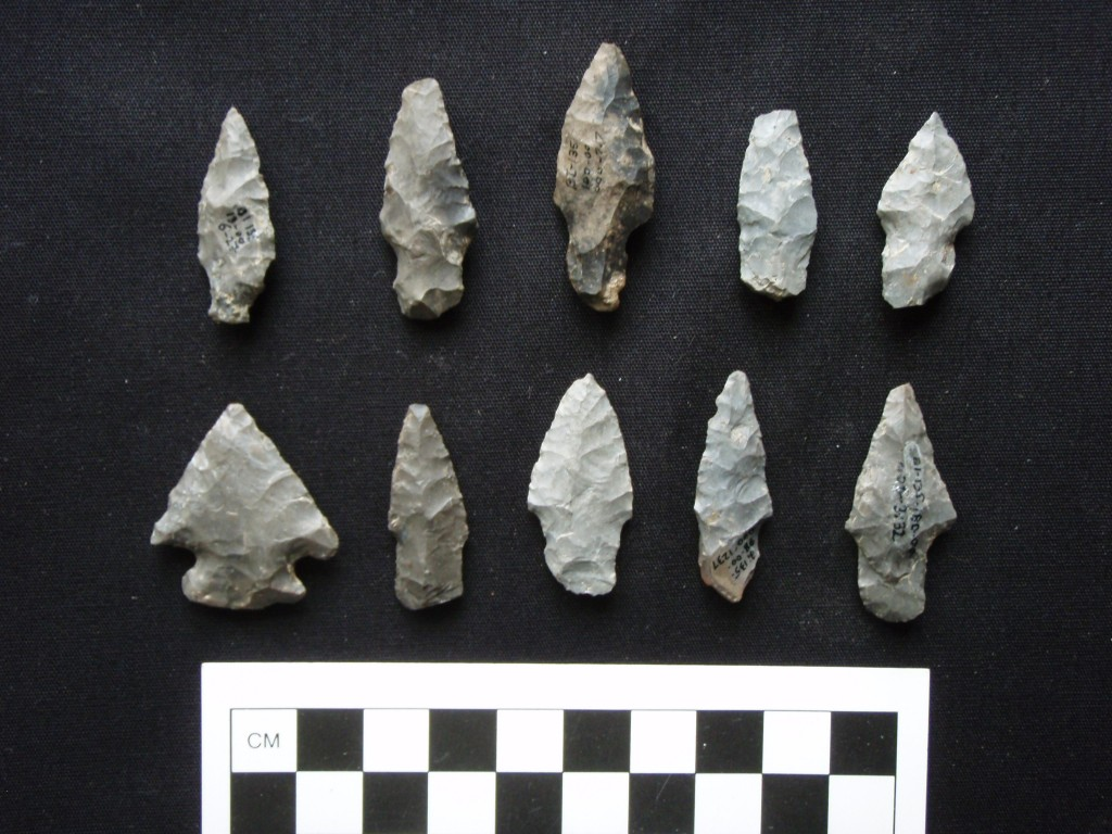 Ten projectile points