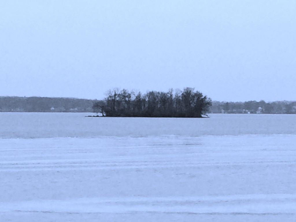 A view of Frontenac Island on a cold winter day