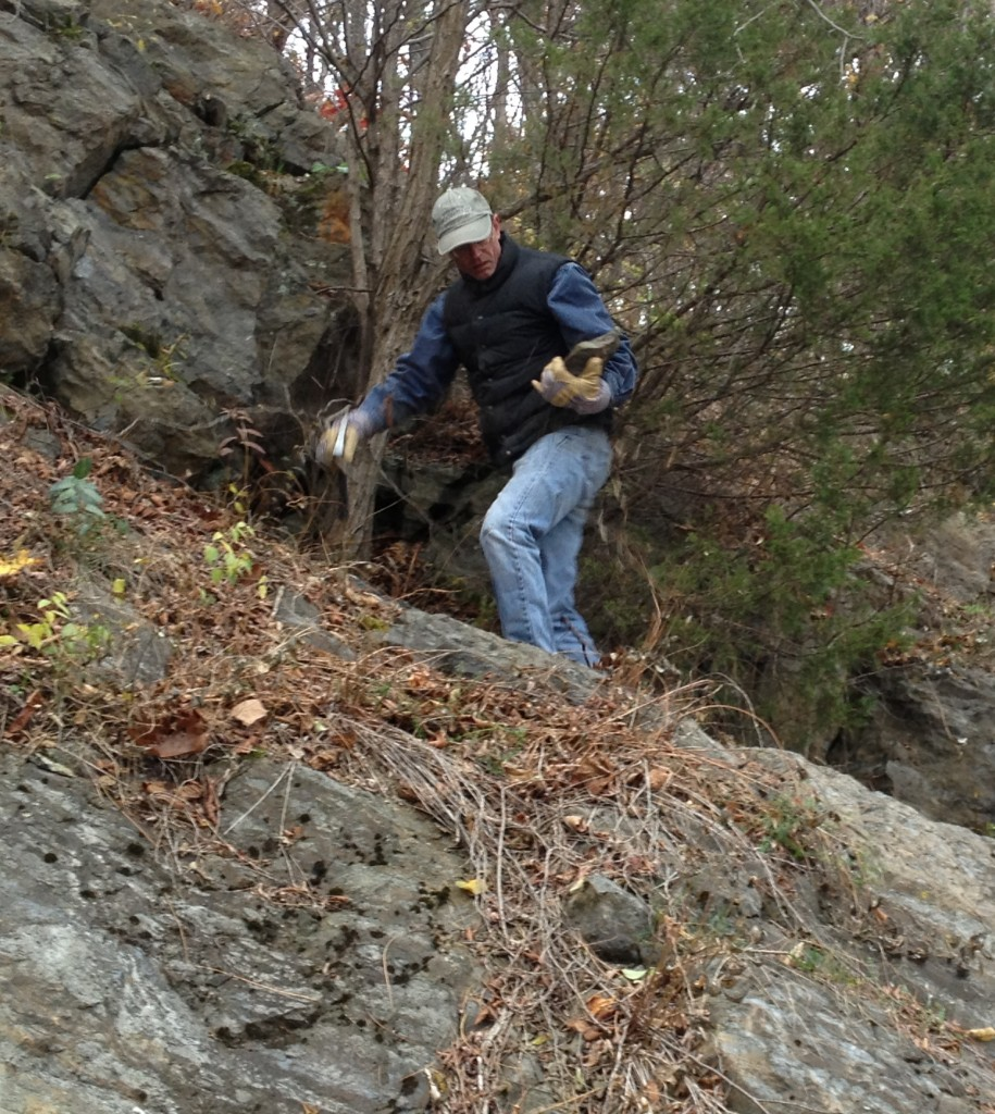 Jon Lothrop selecting chert samples at the Helderberg exposures near Kingston